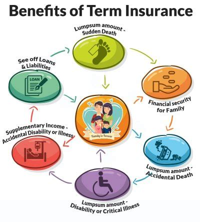 The Role and Importance of Insurance Explained!